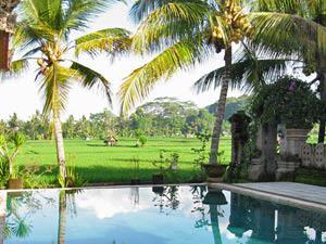 zwembad uitzicht rijstvelden rondreis indonesie