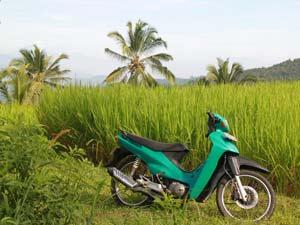 indonesie vervoer scooter