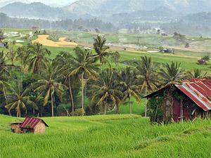 west sumatra indonesie