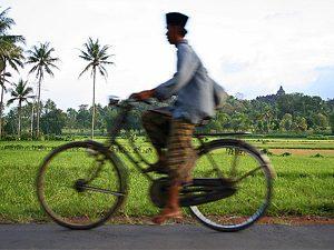 yogyakarta fietsen borobudur - java reis