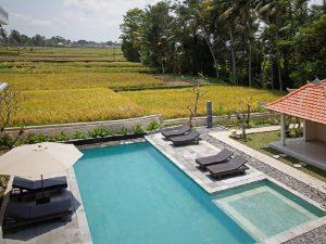 slapen tussen de rijstvelden ubud
