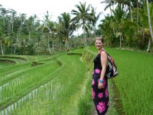 indonesie-lekkerste-sate-bali-rijstveld