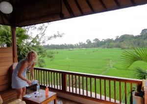 Vakantie Indonesië: Ubud