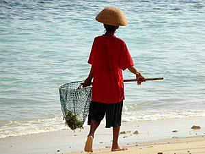 nusa-lembongan-zeewier (bewerkt)