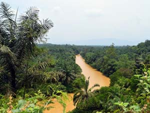Duurzaam reizen met Riksja Indonesië