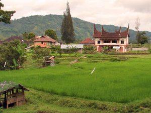 Hoogtepunten Sumatra 3