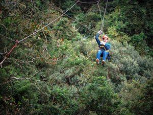 Schwingen Sie sich von Baum zu Baum im Tsitsikamma Nationalpark, Südafrika