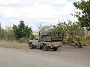 Jeep im Nationalpark