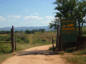 Swaziland - Mlilwane Wildlife Sanctuary