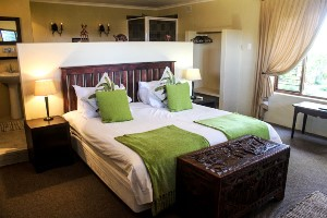 Gemütlich eingerichtetes Gästehaus - Addo Elephant Park, Südafrika