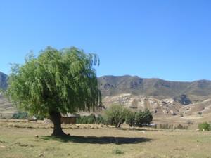 Weite Landschaften in Lesotho