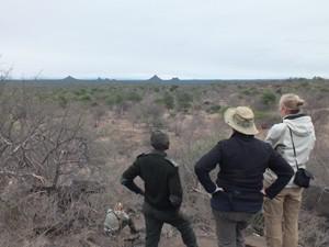 Südafrika - Wandersafari mit Guide