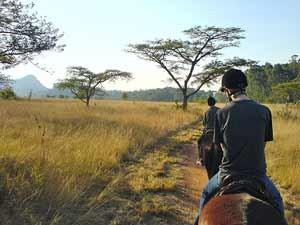 Reiten Sie durch das Mlilwane Wildlife Sanctuary