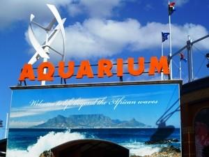 Two Oceans Auqarium in Kapstadt