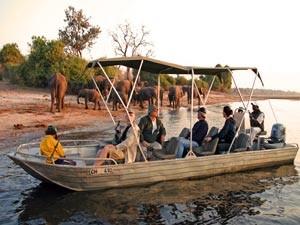 Bootsfahrt auf dem Chobe River