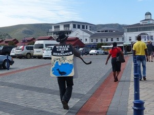Whale Crier unterwegs in Hermanus