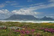 Wunderschöne Kapregion