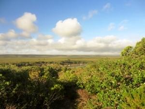 Ausblick im De Hoop Nature Reserve