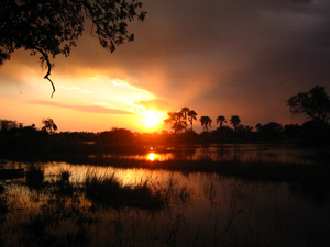 Südafrika & Botswana Rundreise - das Okavango Delta