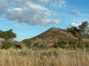 Pilanesberg Game Reserve in Südafrika