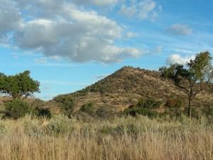 Südafrika-und-Botswana-Rundreise:-Pilanesberg-Game-Reserve-in-Südafrika