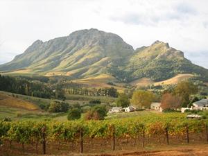 Ausblick auf die Weinregion bei Stellenbosch