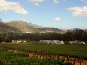 Südafrika-Weinregion-Ausblick-auf-die-Weinberge-Südafrika-Garden-Route
