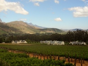 Südafrika Garden Route Weinregion