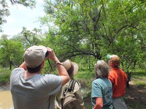 Südafrika - Safari zu Fuß