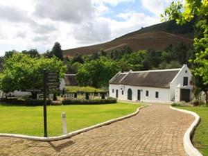 Weingut in Südafrika