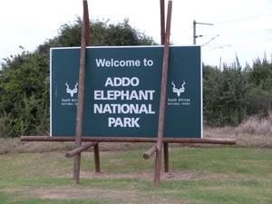Willkommen im Addo Elephant Nationalpark