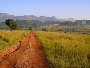 Route im Mlilwane Wildlife Sanctuary
