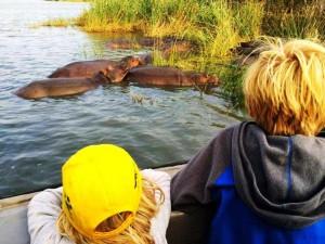suedafrika-familienreise-hippos-kinder
