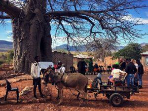 Authentisches Dorfleben in Makushu im Norden Südafrikas
