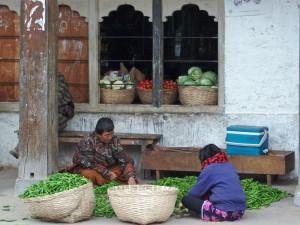 Bäuerinnen sortieren Gemüse