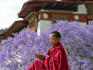 Junger Mönch vor dem Dzong von Punakha