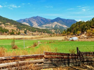 Grüne Felder und Berge im Bumthang Tal