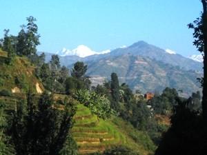 grüne Landschaft auf dem Weg zwischen Chitwan und Kathmandu