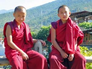 Junge Mönche auf einem Zaun