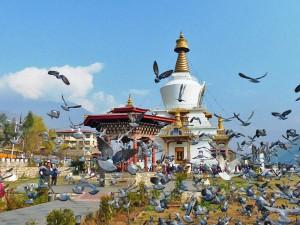 Der National Memorial Chorten in Thimphu mit fliegenden Tauben im Vordergrund