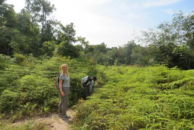 Frau in grüner Natur in Kambodscha