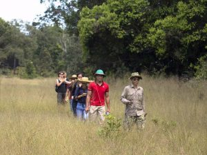 Mit Ranger und Guide den Regenwald erkunden