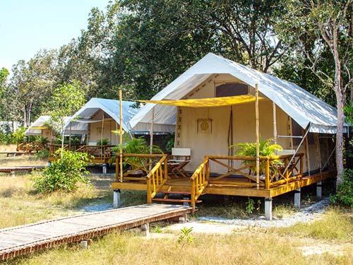 Ihr Domizil im Cardamom Tented Camp