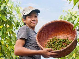 Kommen Sie auf Ihrer Kambodscha Reise mit Einheimischen in Kontakt