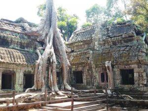 Kambodscha Highlights - Unterwegs bei den Tempeln von Angkor