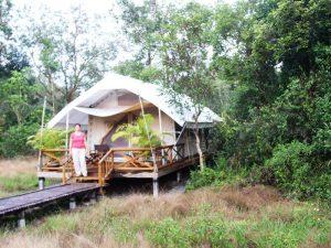 Komfortables Zelt im Cardamom Tented Camp