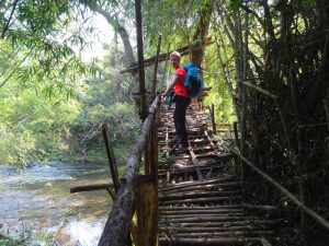 Trekking im Nam Ha Nationalpark
