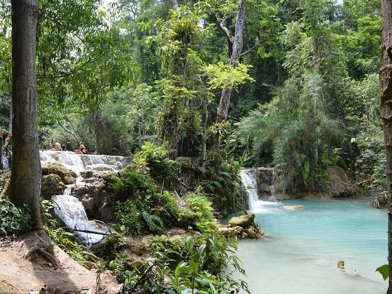 Dschungellandschaft an den Kuang Si Wasserfällen