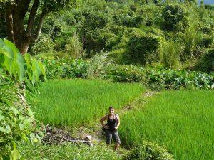 Trekking in Laos: den grünen Norden erleben