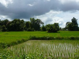 Boun Khao Phansa ist ein wichtiger Feiertag in Laos